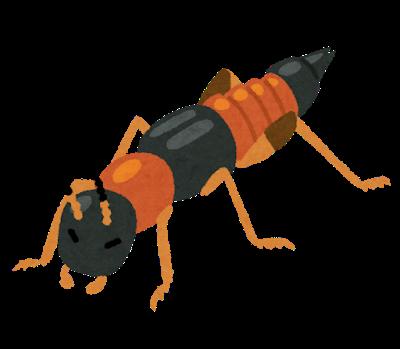 虫の体液シミ