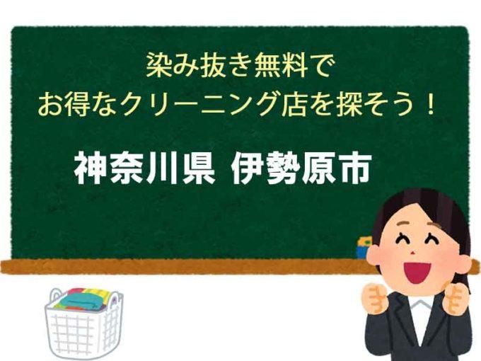 神奈川県伊勢原市、宅配クリーニング